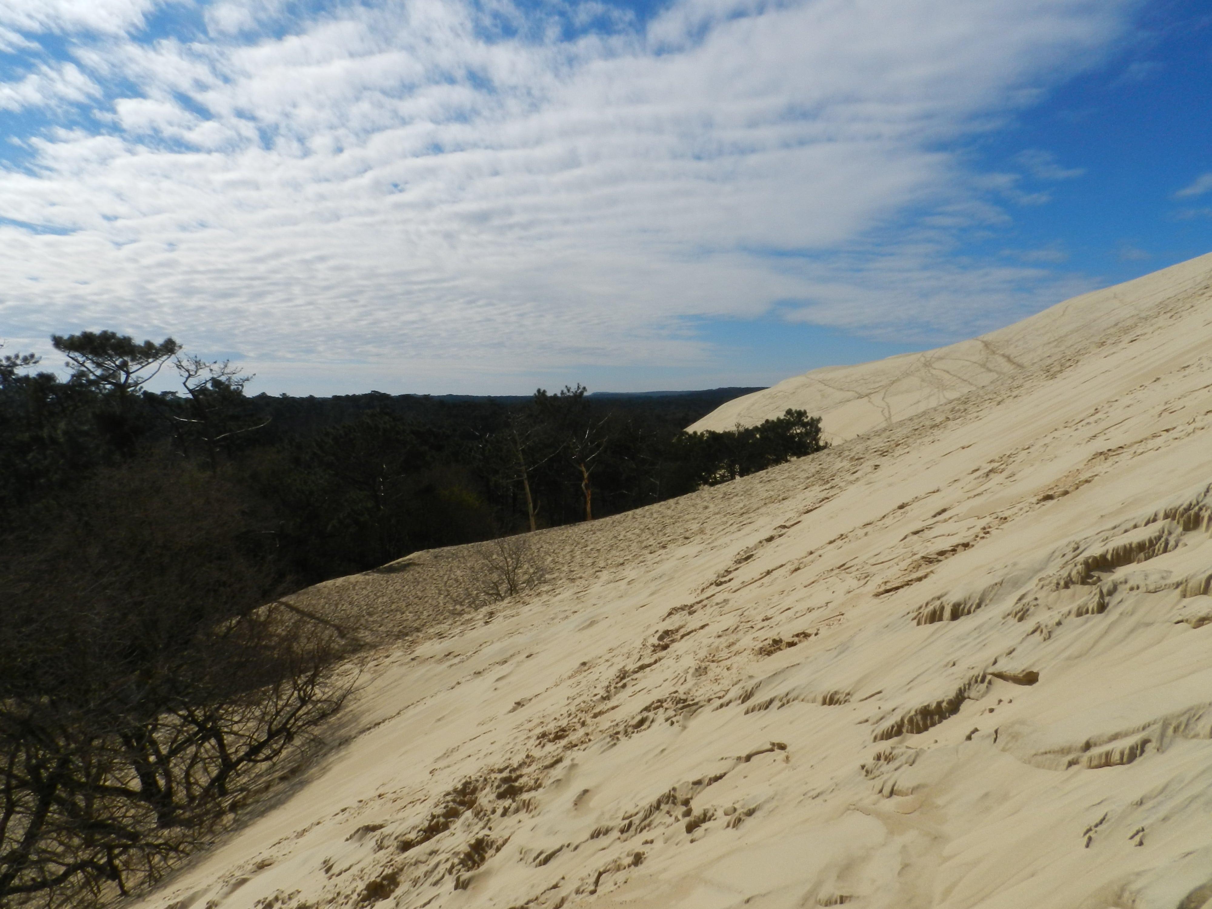 Bordeaux e dintorni tra dune sul mare e buon vino