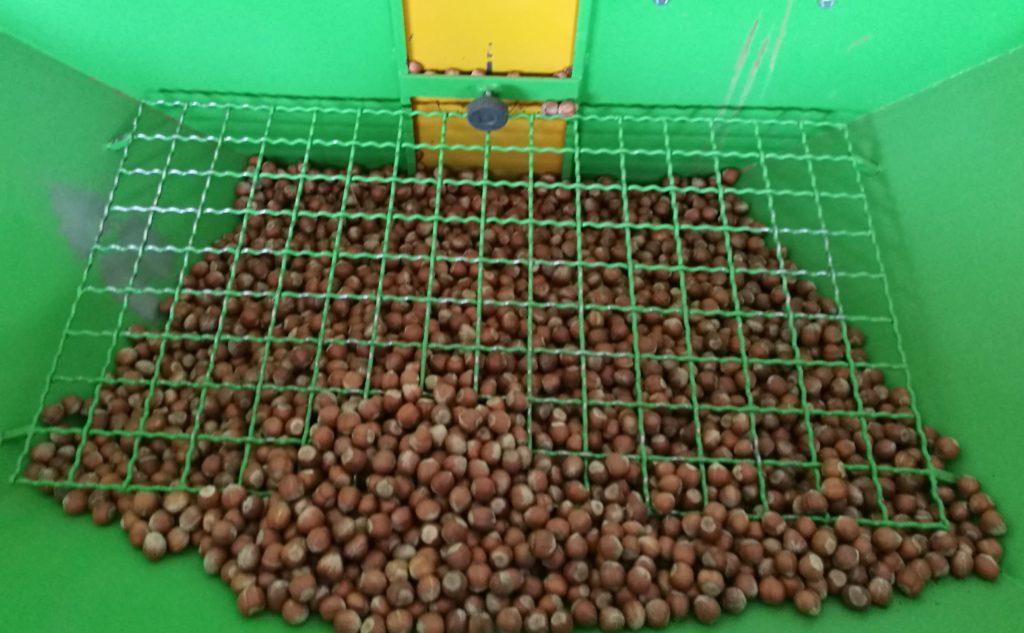 Nocciole del piemonte IGP Nocciola trilobata gentile dell'azienda Agricola F.lli Durando