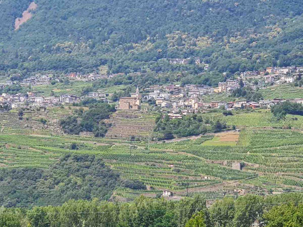 Bassa Valtellina Chiuro i terrazzamenti