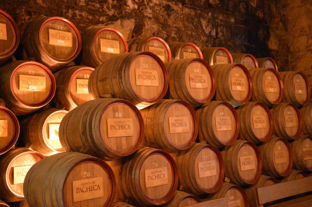 Il legno e il vino