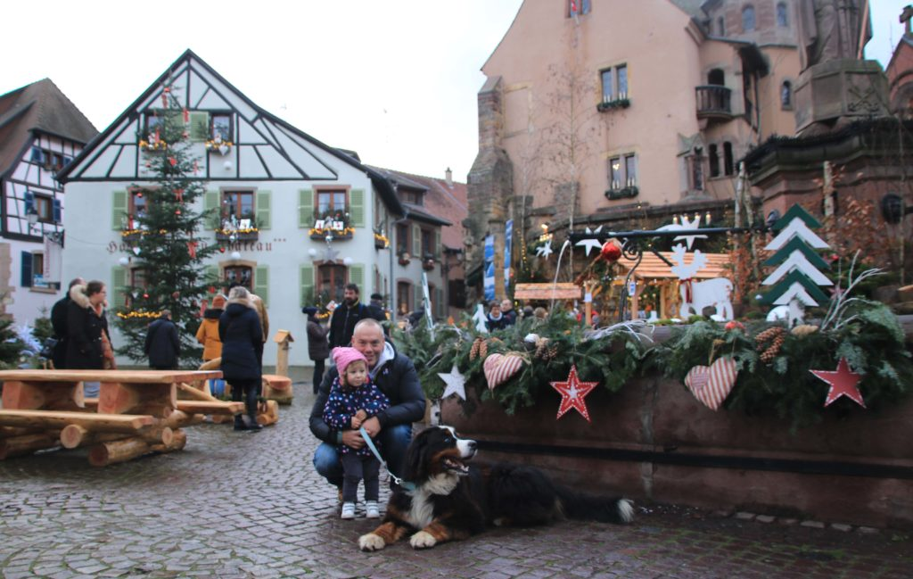 Fontana del borgo di Enguishem Alsazia